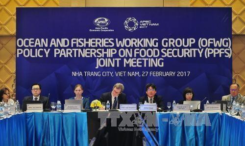 2017年越南APEC峰会:各经济体分享确保粮食安全与应对气候变化的经验 hinh anh 1