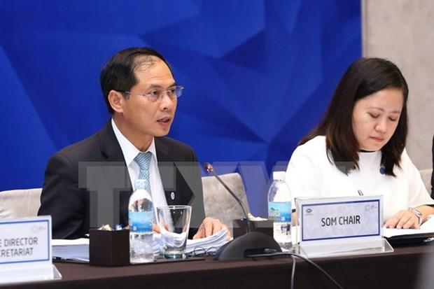 2017年APEC第一次高官会及相关会议第九天议程顺利完成 hinh anh 1