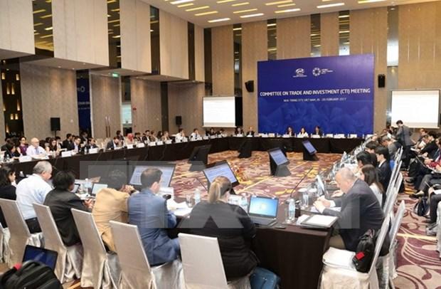 2017年APEC第一次高官会及相关会议进入第十天 hinh anh 1