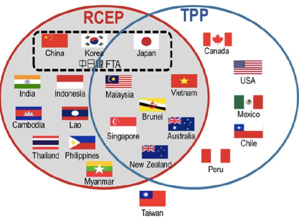 RCEP新一轮谈判正式启动 围绕取消或锐减关税壁垒展开磋商 hinh anh 1