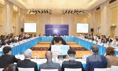 2017年APEC第一次高官会及相关会议进入第十二天 hinh anh 1
