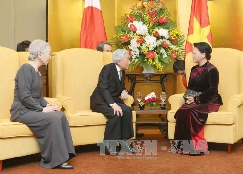 国会主席阮氏金银会见日本天皇明仁和皇后 hinh anh 1
