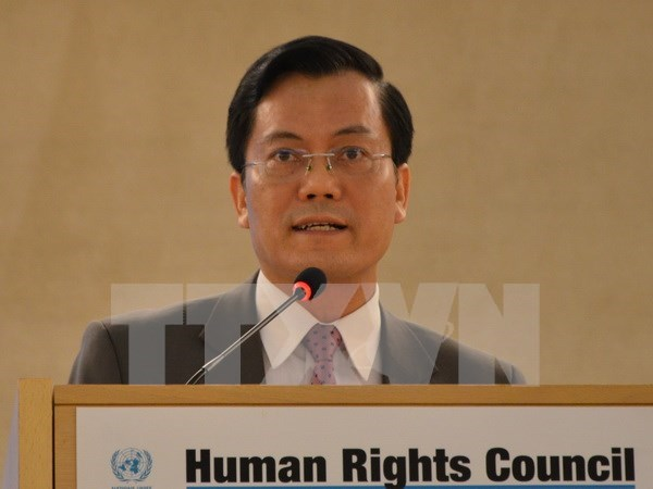 越南为国际人权事业作出积极贡献 hinh anh 1