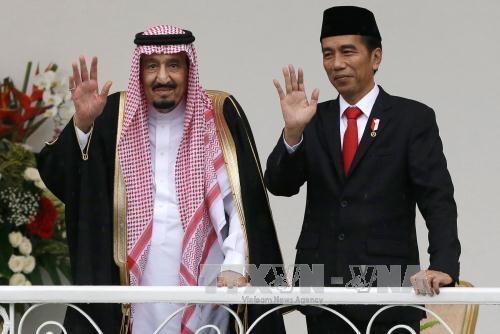 印尼与沙特阿拉伯共同签署多项合作备忘录 hinh anh 1