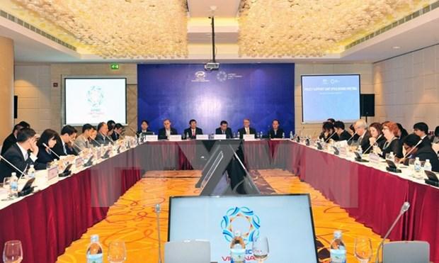 2017年越南APEC峰会:APEC第一次高官会及相关会议完成各筹备会议 hinh anh 1