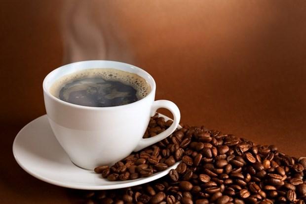 2017年前2个月越南咖啡出口额猛增 hinh anh 1