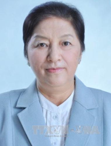 老挝国会主席巴妮·雅陶都抵达河内 开始对越南进行正式友好访问 hinh anh 1