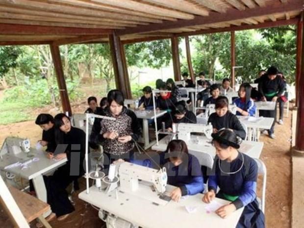 越南良好实现性别平等各项目标 hinh anh 1