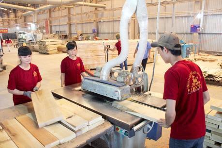 越南木材加工业发展潜力巨大 hinh anh 1