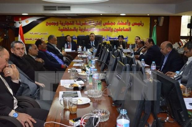 埃及企业寻找在越南合作商机 hinh anh 1