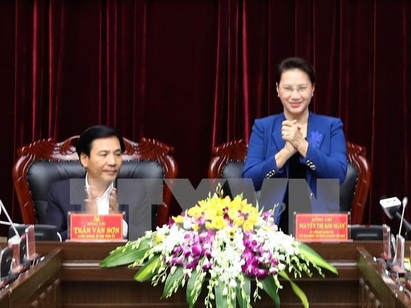 国会主席阮氏金银:奠边省需充分发挥优势 加强合作推动旅游业发展 hinh anh 1