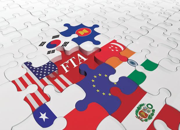 充分发挥现有自由贸易协定的作用促进经济社会可持续发展 hinh anh 1