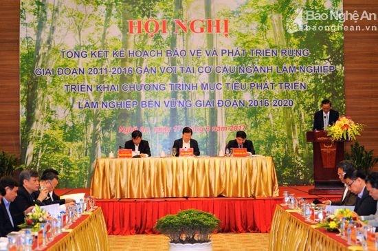政府副总理郑廷勇指导展开林业可持续发展目标计划 hinh anh 1