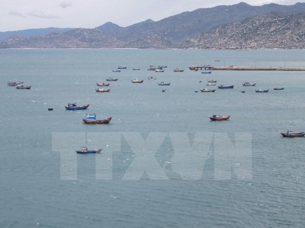 文莱警察扣押一艘越南渔船 hinh anh 1