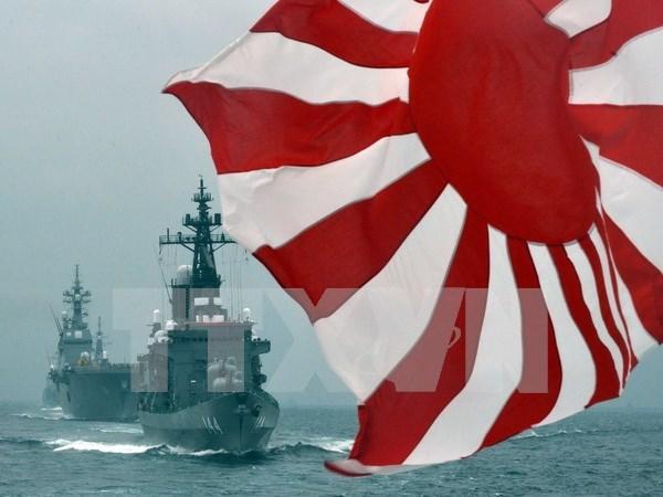 日本将继续支持东南亚国家提升海上监控能力 hinh anh 1