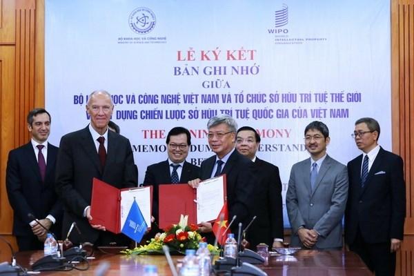 世界知识产权组织将协助越南制定《国家知识产权战略》 hinh anh 1
