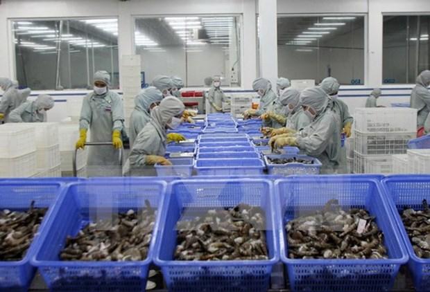 越南力争2020年虾类出口额达50亿美元 hinh anh 1