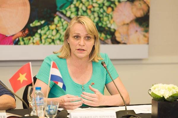 越南与荷兰农业合作正迎来新发展机遇 hinh anh 1