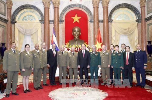 国家主席陈大光:越南在任何情况下都愿与古巴肩并肩站在一起 hinh anh 3