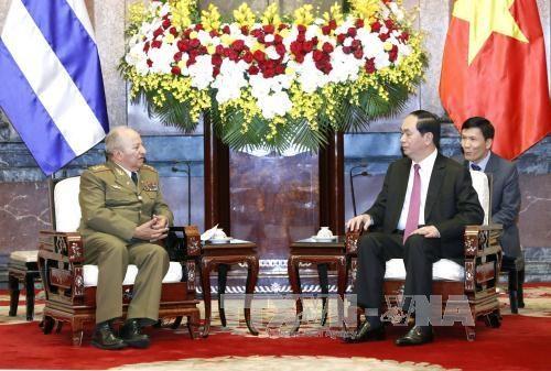 国家主席陈大光:越南在任何情况下都愿与古巴肩并肩站在一起 hinh anh 2