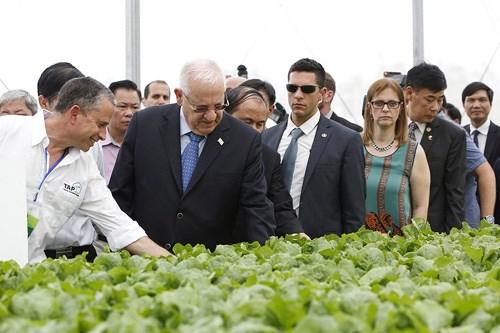 以色列总统鲁文·瑞夫林及夫人造访三岛VinEco高工艺应用农业区 hinh anh 1
