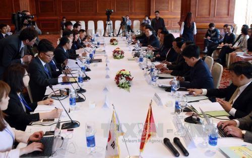 第十三次越韩环境部长会议在河内召开 hinh anh 1