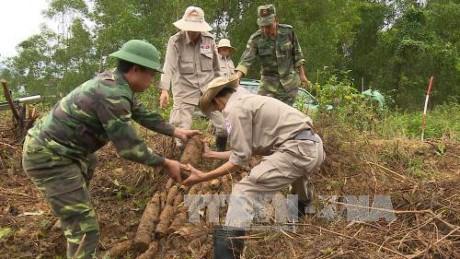 """美国""""越南和平树组织""""代表团访问越南 hinh anh 1"""