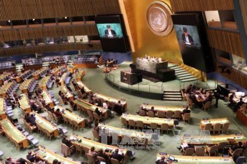 越南代表参加联合国禁止核武器条约谈判 呼吁各国履行核裁军承诺 hinh anh 1