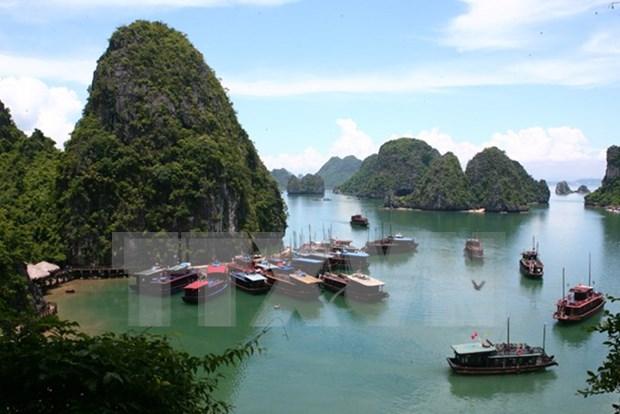自4月1日起越南广宁省将对下龙湾参观门票费进行进行调整 hinh anh 1