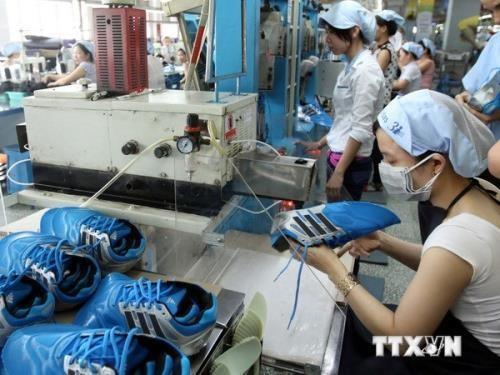 越南鞋类企业提高经营与出口能力 hinh anh 2