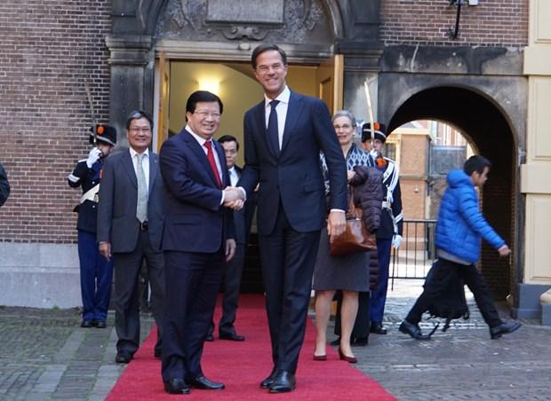 越南政府副总理郑廷勇会见荷兰首相马克·吕特 hinh anh 1