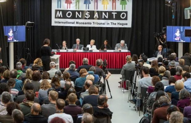 海牙国际法庭裁决孟山都公司破坏环境罪成立 hinh anh 1