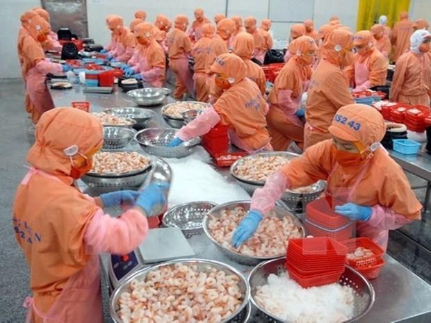 越南水产为重新赢得欧洲市场的信任做努力 hinh anh 1