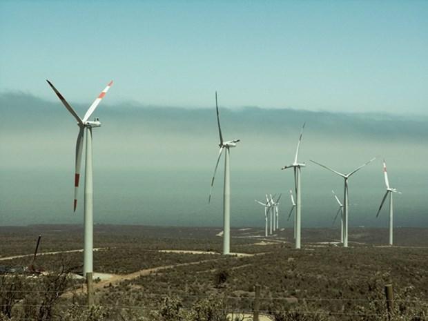 印度尼西亚大力推进风电项目建设 hinh anh 1