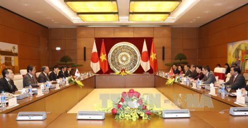 国会主席阮氏金银与日本国会众议院议长大岛理森举行会谈 hinh anh 2