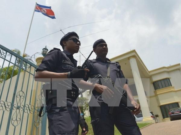 马来西亚大力开展打击非法外国劳工行动 hinh anh 1