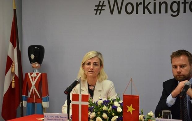 越南与丹麦加强4大战略领域的合作 hinh anh 1