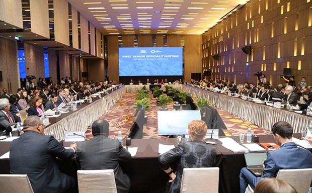2017年APEC第二次高官会期间将举办49场会议和研讨会 hinh anh 1