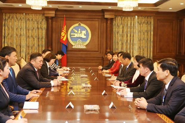 越南国家副主席邓氏玉盛分别会见蒙古国领导人 hinh anh 5