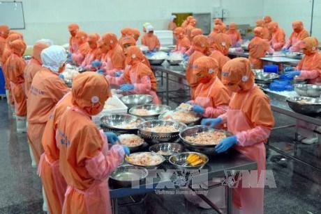 越南拨出1000多亿越盾用于提高渔业竞争力 hinh anh 1