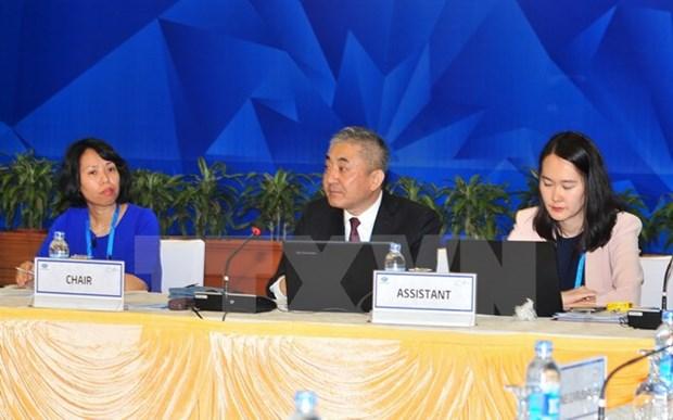 200多名代表参加9日召开的APEC工作小组系列会议 hinh anh 1