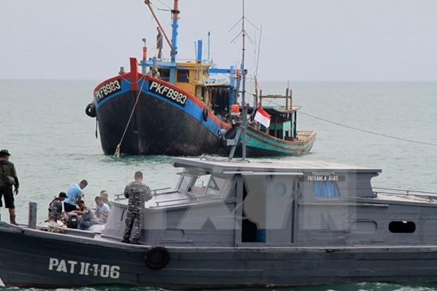 印尼拟建立《打击非法捕鱼及相关犯罪活动区域公约》 hinh anh 1