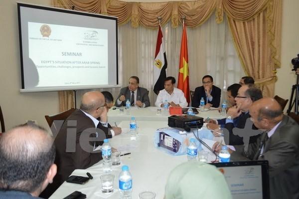 有关越南与埃及合作机遇、挑战及展望研讨会在埃及举行 hinh anh 1