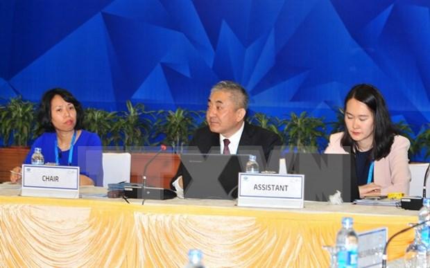 2017年APEC会议:汽车对话会议今日开始举行 hinh anh 1