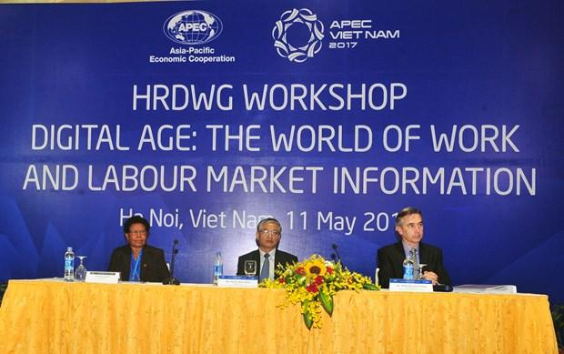 2017年APEC会议:在数字纪元中就业世界和劳动力市场信息 hinh anh 2