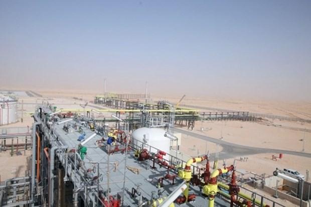 越南国家油气集团在撒哈拉沙漠开采第1000万桶石油 hinh anh 1