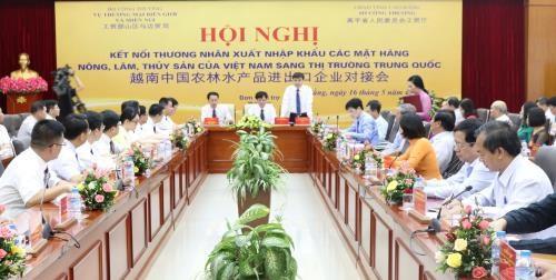 越中企业加强对接 加大越南农林水产品对中国出口力度 hinh anh 1