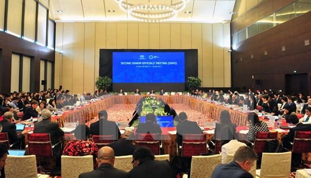 2017年APEC会议:第二次高官会正式开幕 hinh anh 1