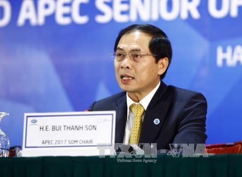 2017年APEC会议:让APEC离居民和企业更近 hinh anh 1