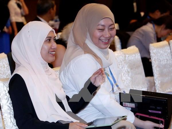 2017年APEC会议:首都河内给国际代表留下美好印象 hinh anh 1